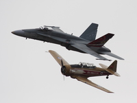 view--cf-18 hornet and t-6 texan