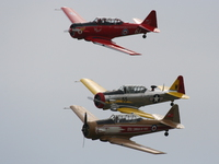 view--havard p-51 mustang and t-6 texan