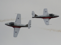 canadian forces snowbirds - two planes head on collision