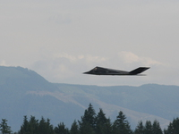 view--f-117a night hawk stealth fighter landing