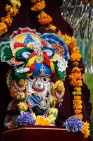 lord krishna icon