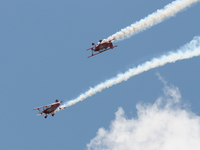20080810135123_red_eagle_team