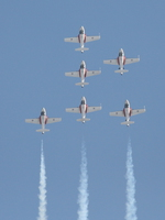 snowbirds Abbotsford, British Columbia, Canada, North America