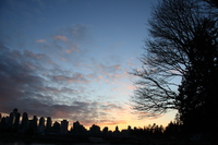sunset stanley park