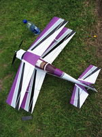 purple model plane and bottle of water