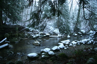 kanaka creek in winter