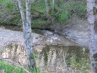 080412183111_bear_creek