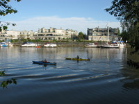 canoes near ladner harbour park