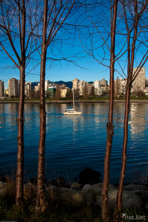 view--false creek