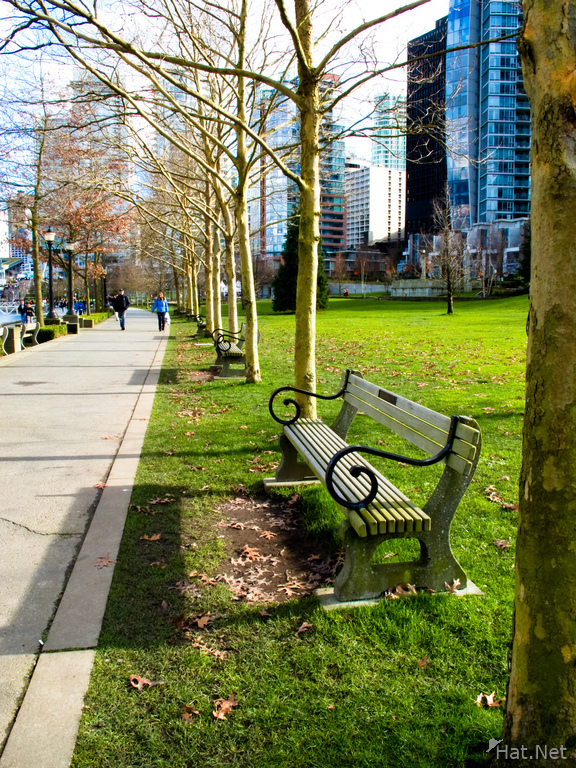 vancouver coal harbour benches