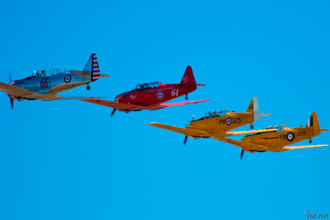 view--harvards in a line