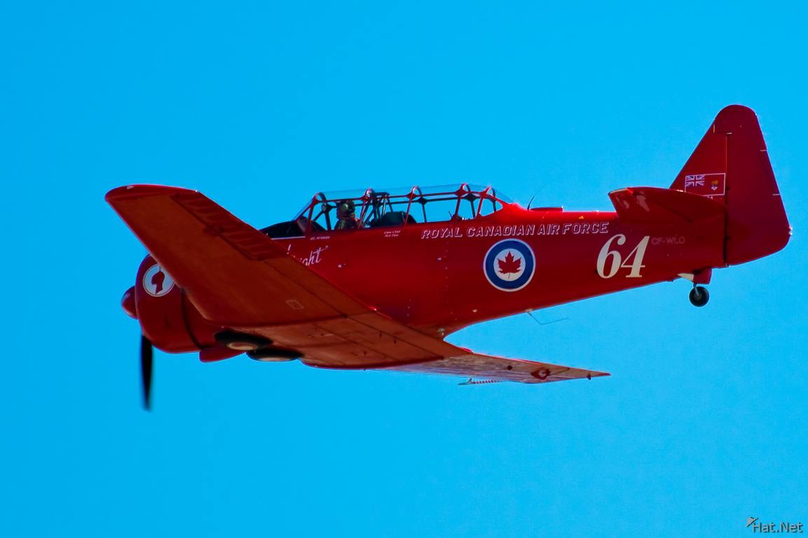 red canadian harvards