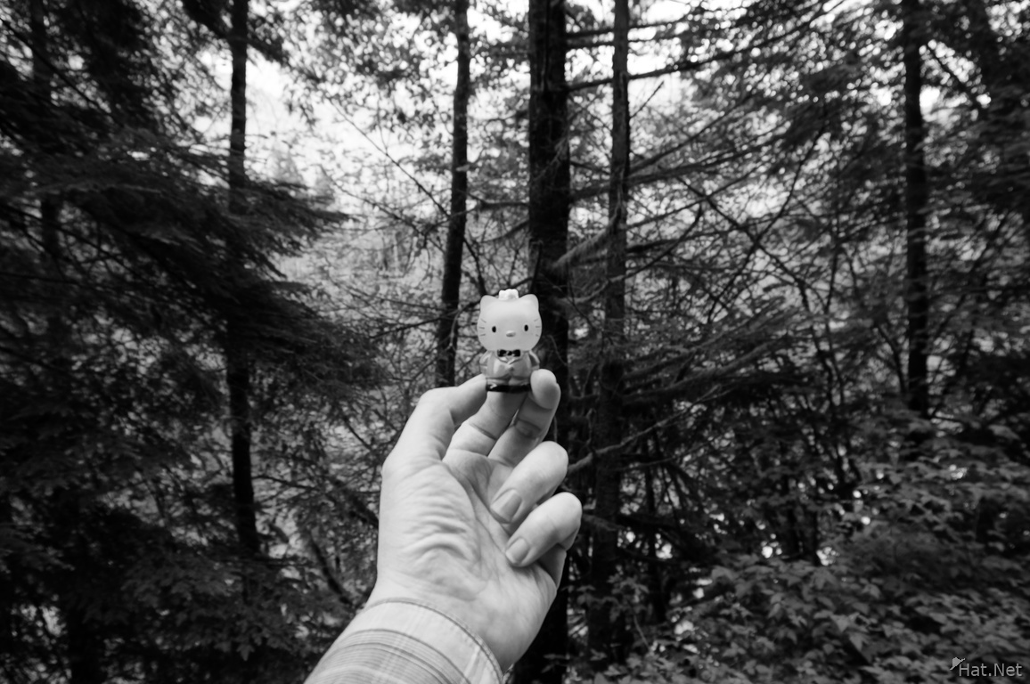 Bunzen Lake Sony Nex Hello Kitty-Rich Tone Mono