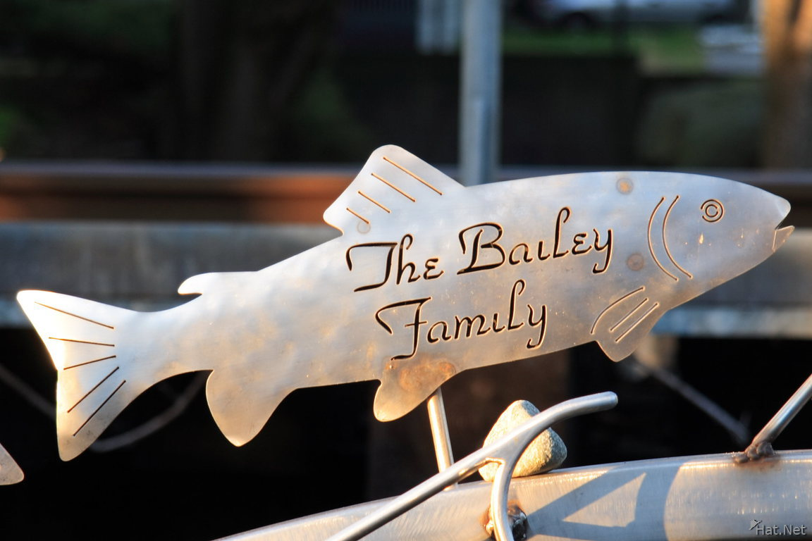 the bailey family fish
