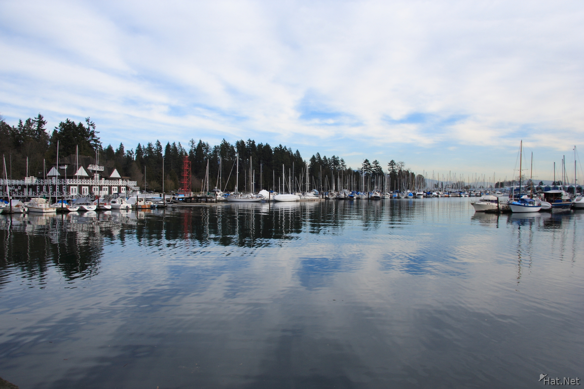view--coal harbour
